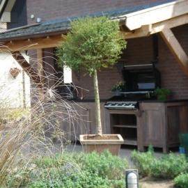 afbeelding eiken-bijgebouw-010-jpg