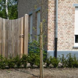 afbeelding houten-poort-classic-low-011-jpg